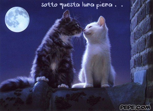 sotto_questa_luna_piena_0