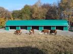 cavalli-del-bisbino-tetto-nuovo_1_745_gallery