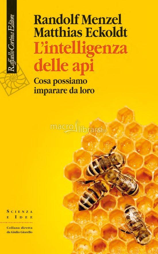 l-intelligenza-delle-api-132104