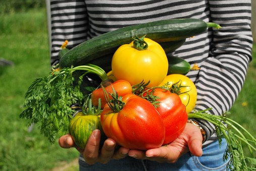 vegetables-742095__340