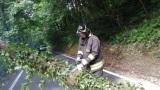 Maltempo e danni: allagamenti, alberi caduti, treni fermi a San Giovanni. Da stanotte più di cento interventi dei vigili del fuoco