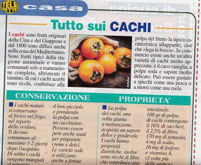 cachi1629