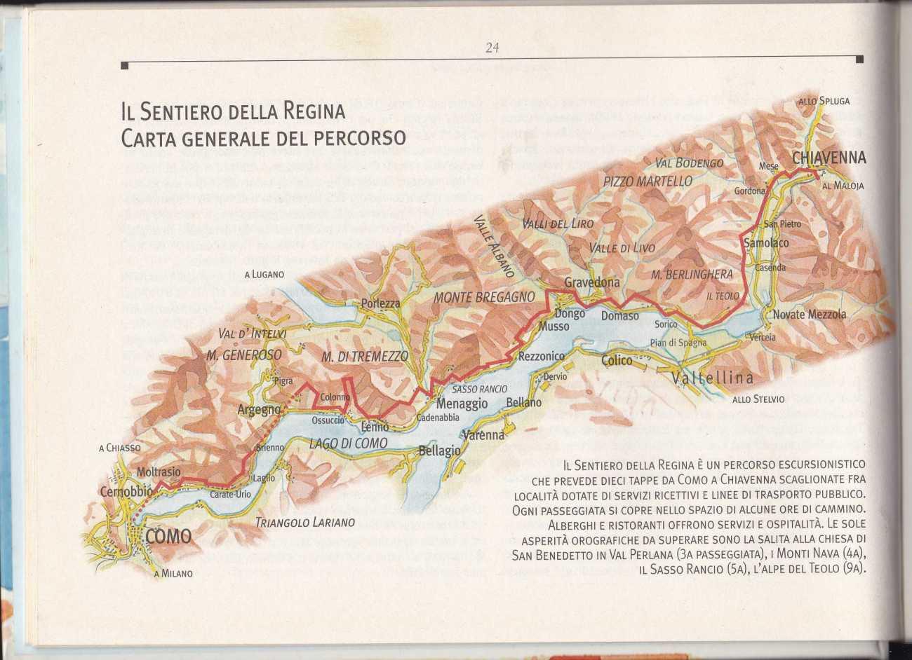 STELLA CORRADI AIDS1977