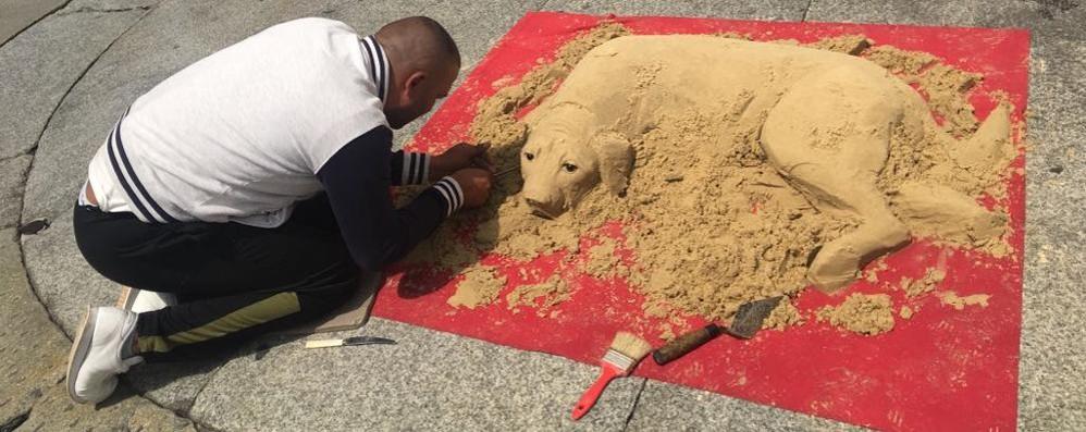 como-nuovi-artisti-di-strada-cane-di-sabbia-in-piazza-duomo_4a8c2e64-5c50-11e8-9d9f-abb04a68464d_998_397_big_story_detail