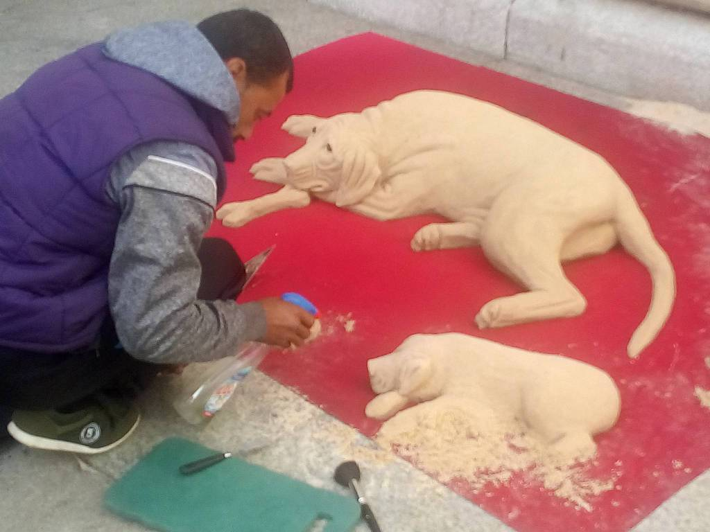 ragazzo-che-realizza-i-cani-in-sabbia-esterno-del-duomo-di-como-150779