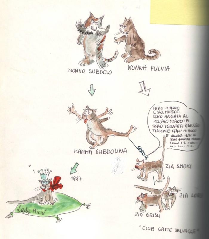 23 foto gatti insegnano