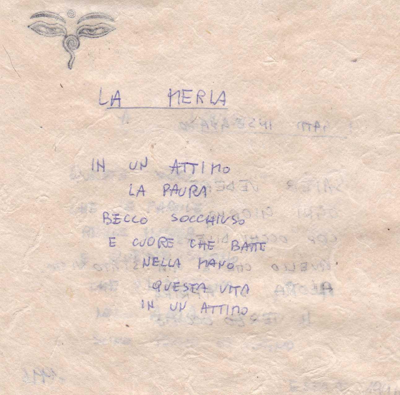 31 Merla