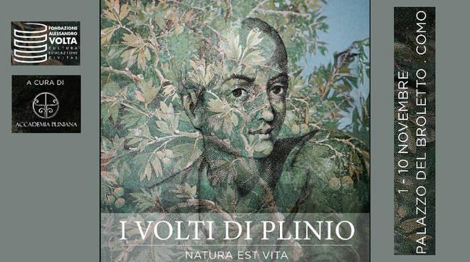 i-volti-di-plinio-165630.660x368